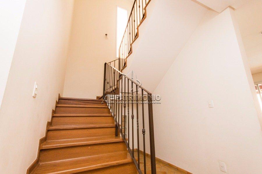 7 Escada